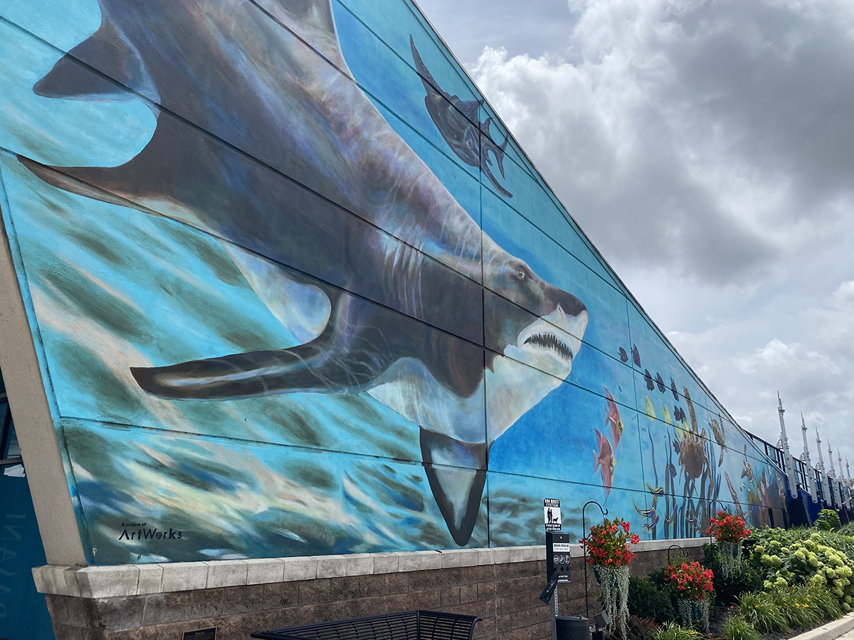 Newport Aquarium | Newport, KY